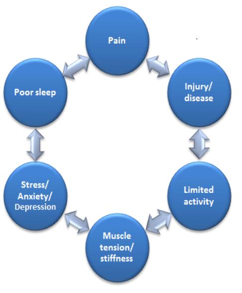Fibromyalgia Conditions